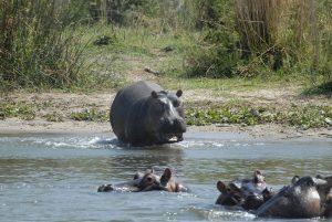 maatwerk reizen Malawi