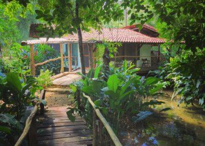 Hotels Mexico in de Jungle